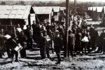 Camp de Gurs. Lettre de René Bousquet au préfet régional de Toulouse. 11 août 1942.